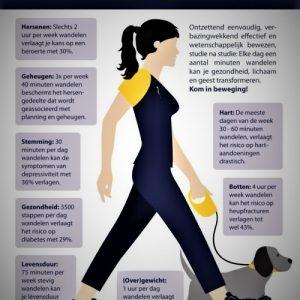 waarom wandelen zo goed voor je gezondheid is.